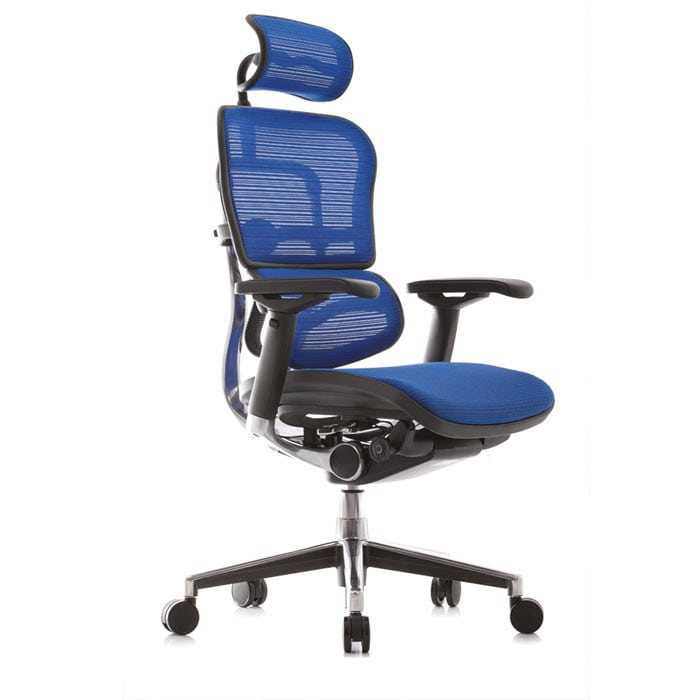 Mesh Ergohuman 24/7 chair