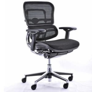 mesh ergohuman 24-7 chair